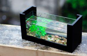 小型 インテリア 水槽
