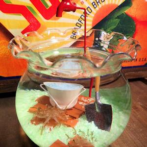 インテリア 水槽 サカサクラゲ 金魚鉢
