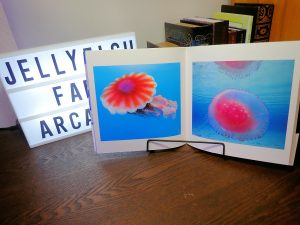 クラゲ 写真集