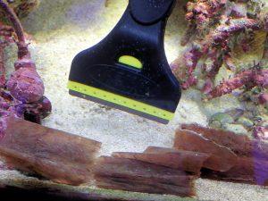水槽 メンテナンス スクレーパー ガラス 掃除